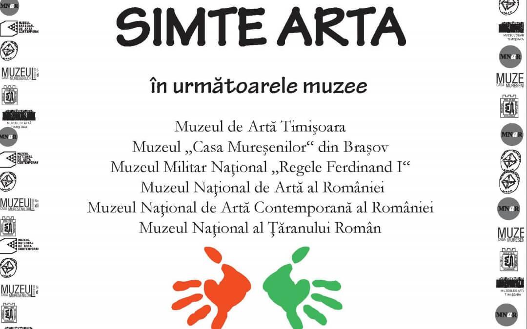 Simte Arta – Comunicat de presă (iulie 2013)